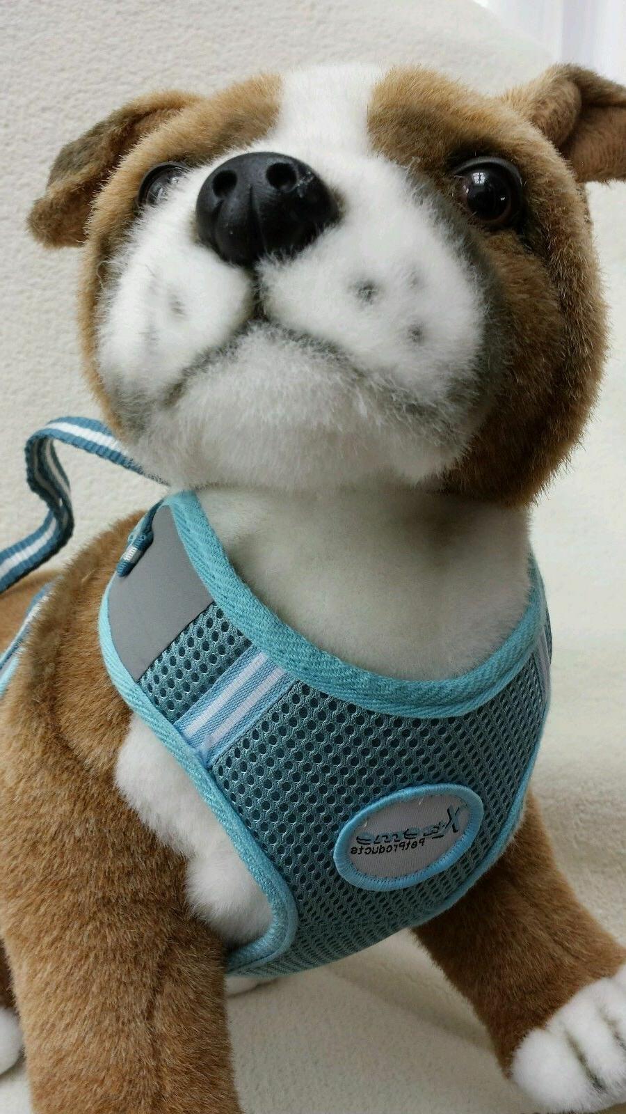 Xtreme PET PRODUCTS MESH HARNESS SIZE M L BLUE