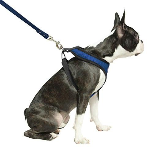 Gooby - Harness, Harness with Mesh, Large