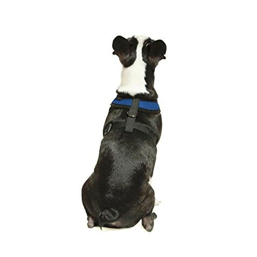 Gooby - Harness, Dog with Breathable Mesh, Large