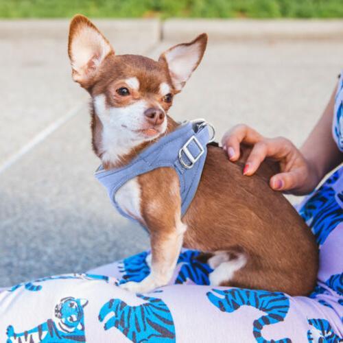 Dogs Reflective Vest Chihuahua Bulldog US