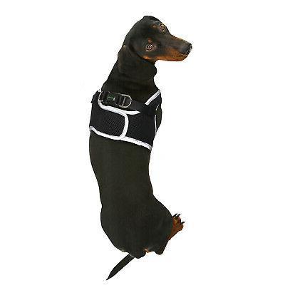 Stitchew Step Padded Mesh Dog Vest with Safety