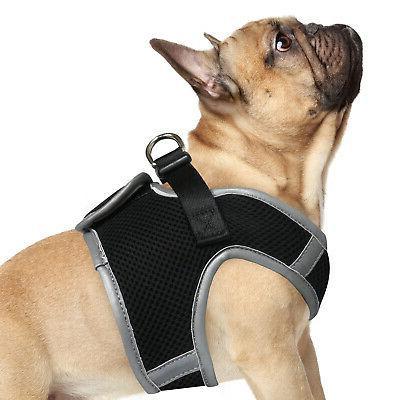 step in padded mesh dog harness vest