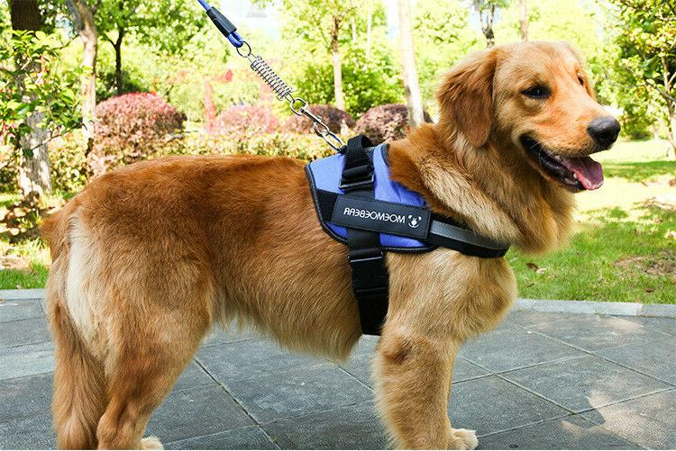 Harness Heavy Duty Vest Dog