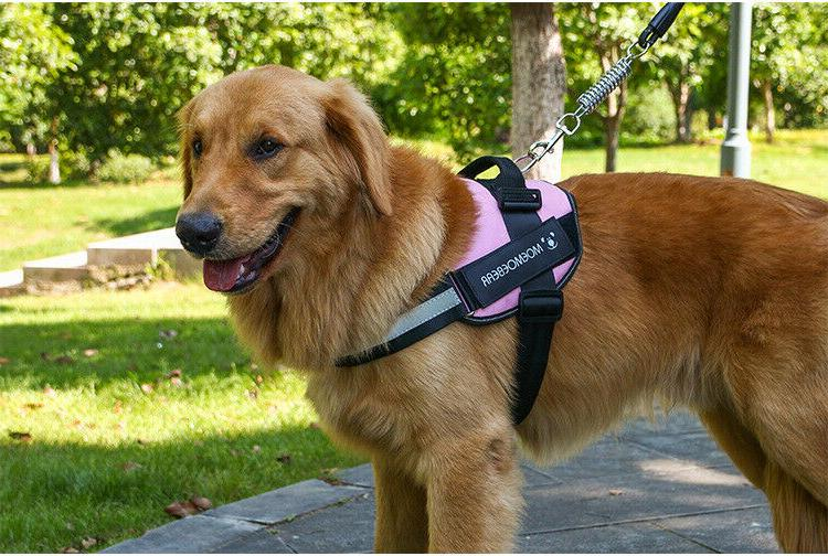 Tactical Dog Training Patrol Harness,