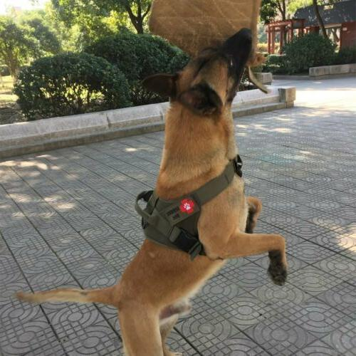 Tactical Military K9 W/Handle