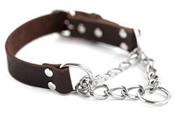 Mighty Paw Leather Training Collar, Martingale Collar, Stain