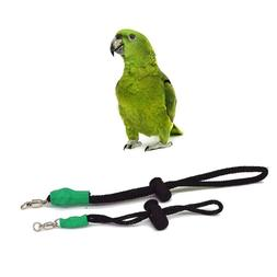 Outdoor Parrot Bird Training  Small Animal Harness Leash Ant