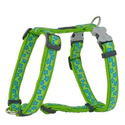 Red Dingo Patterned Dog Harness, Small, 15 Mm, Turquoise Sta
