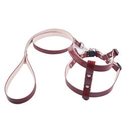Puppy Collars <font><b>Dog</b></font> <font><b>Harness</b></