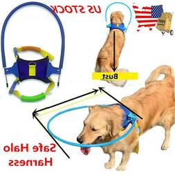 Safety Halo Harness For Blind Pet Dogs Collide Wall Protecti