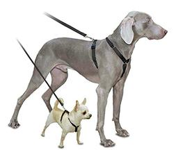 PetSafe Sure-Fit Harness, Adjustable Dog Harness from the Ma