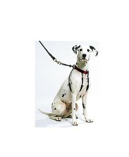 The Original Sporn Training Halter for Dog - S - XL - effect
