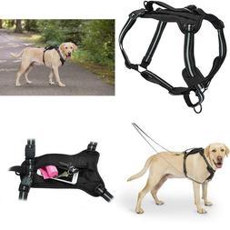 Walk-Along Outdoor Dog Harness