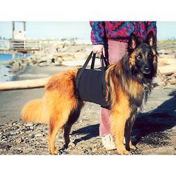 Walkabelly Pet Harness Med-Large