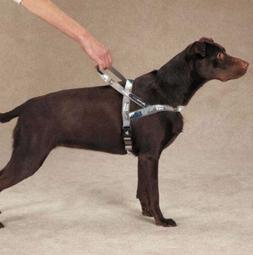 Casual Canine Xtreme Game Over Dog Control Harness, Fits Che
